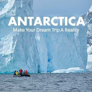 Make Your Antarctica Dream Trip A Reality